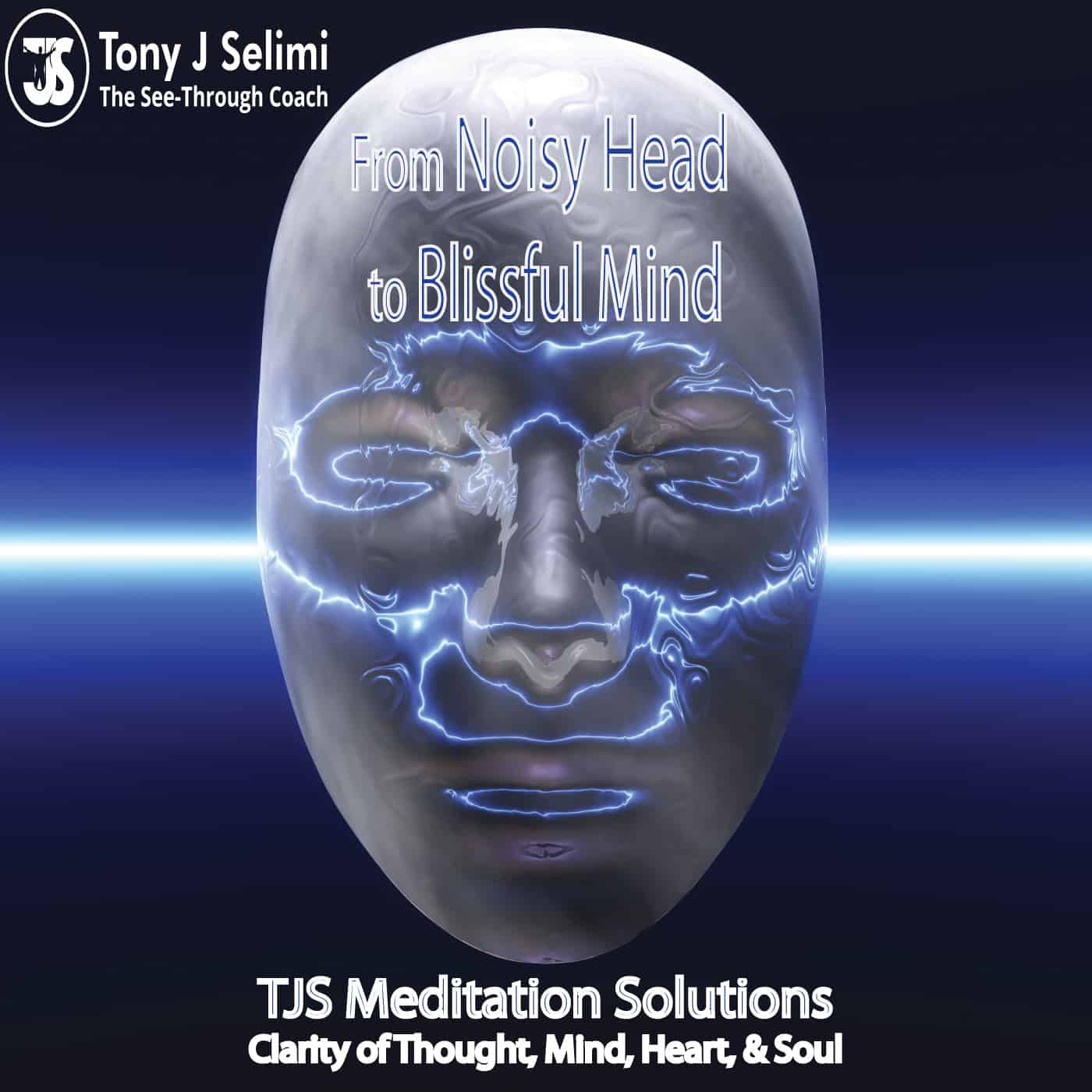 A Path To Wisdom Written By Tony J Selimi Designing Your Life Book From Noisy Head To Blissful Mind Meditation